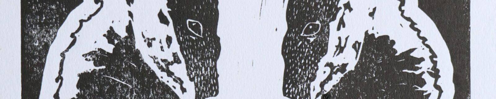 Scribbles Gallery